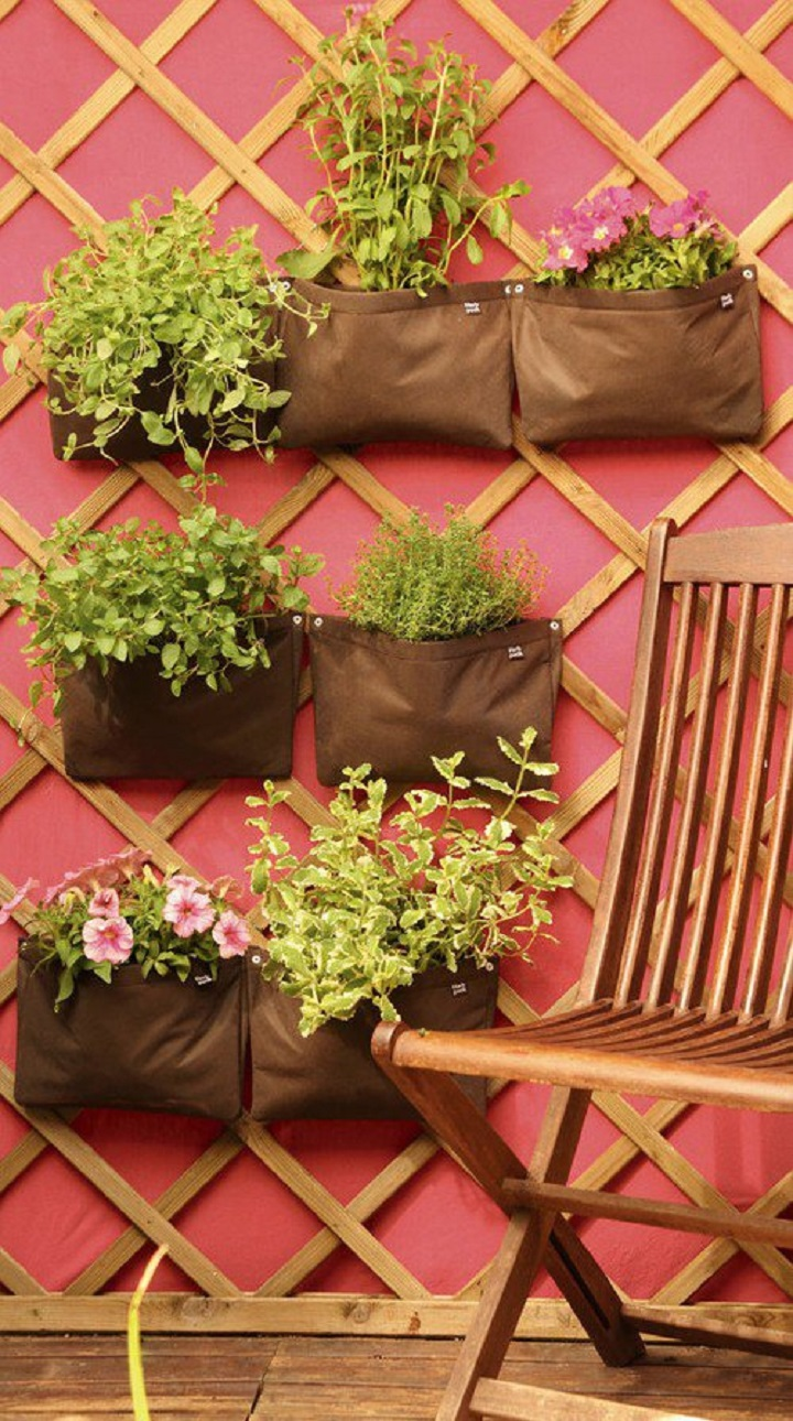 Ervas aromáticas em casa