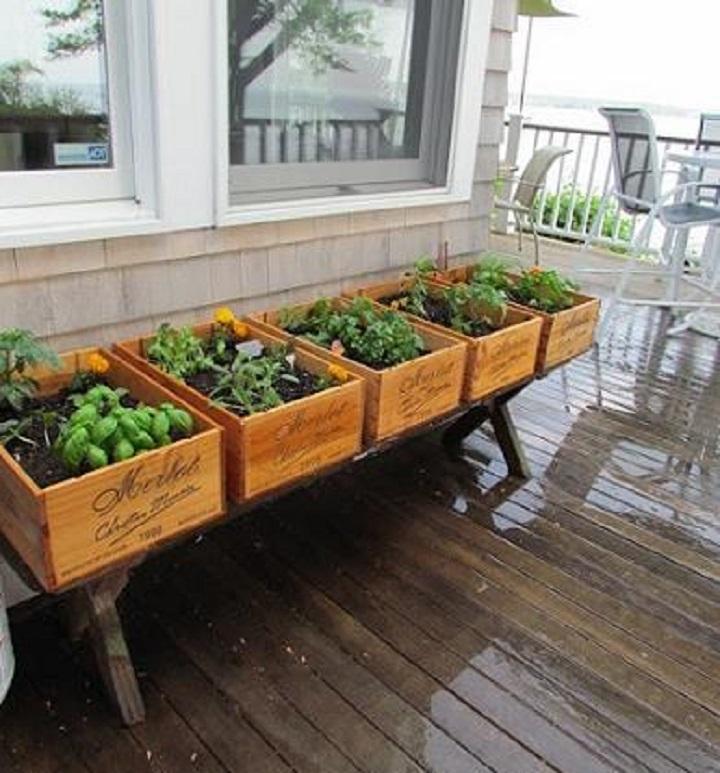 ervas aromáticas em caixas de madeira