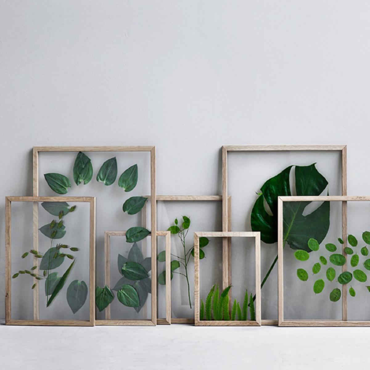 Ideias com 'h': Wallart com flores ou plantas