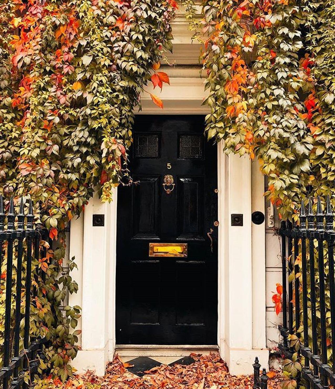 casas perdidas em tons de outono